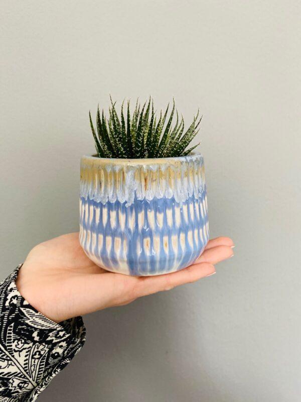 Kolorowa osłonka ceramiczna, niebiesko-biało-beżowa, haworsja