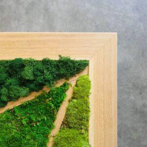 Obraz z mchu stabilizowanego w drewnianej ramie