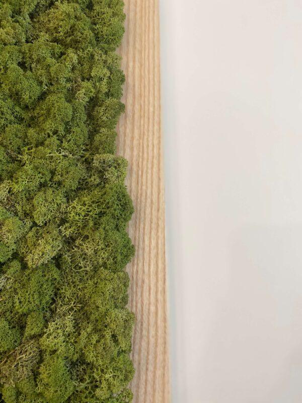 Obraz z mchu stabilizowanego chrobotka reniferowego w drewnianej ramie
