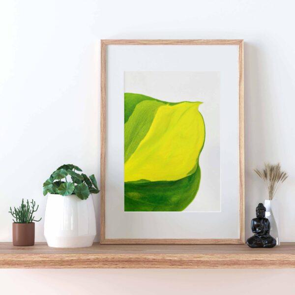 Plakat z motywem liścia filodendrona brasil
